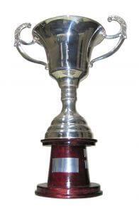 trophy win in public speaking questions speakers should ask