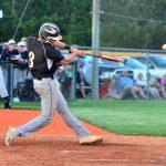 Baseball Hitter