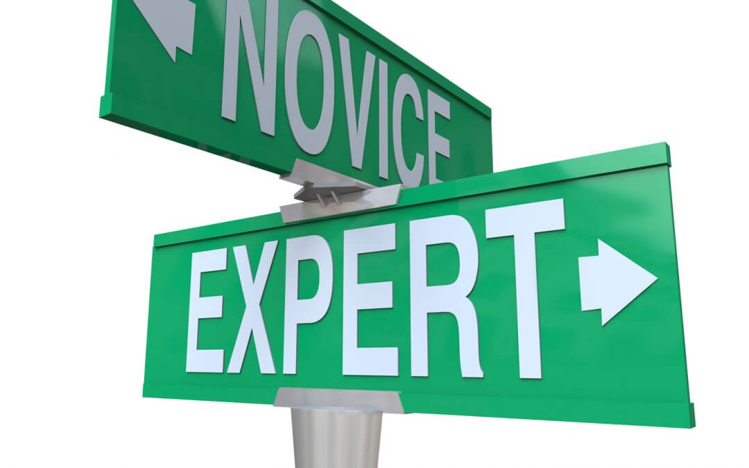 Expert vx novice -- become an expert in your field
